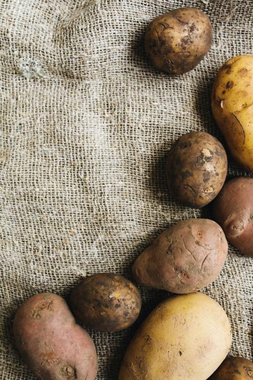 Vesterlyng Café Havnsø kartofler